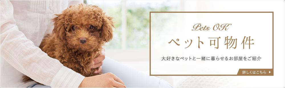 茅ヶ崎市でペット可の賃貸 | 神奈川県【ペットアド …