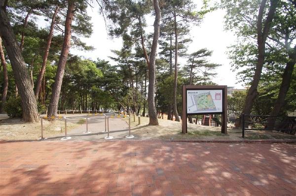 塚原美和台中央公園