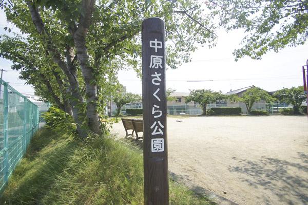 中原さくら公園
