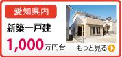 新建别墅1000万多日元