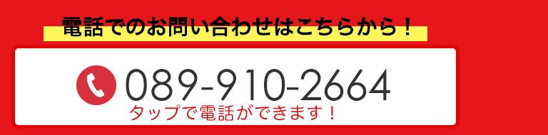 TEL:089-910-2664