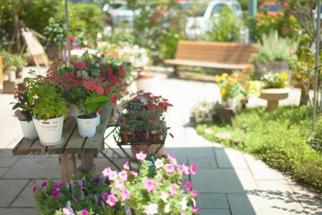 庭付き住宅はメリット盛りだくさんの物件